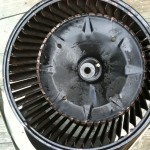 cleaned ac blower wheel 1